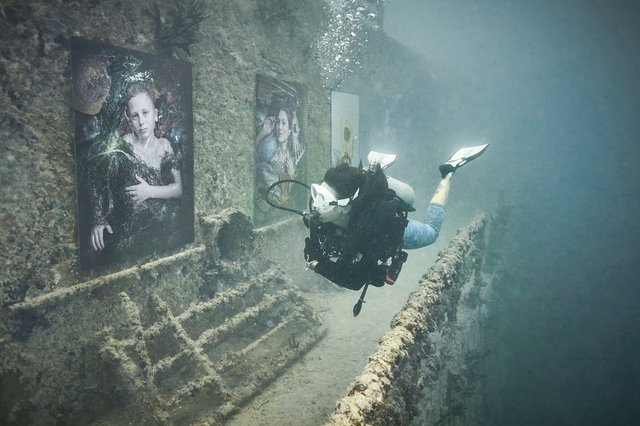 Фотограф з Австрії проводить виставки своїх робіт під водою: ефектні фото - фото 351890