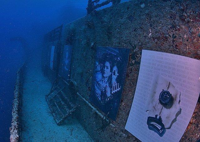 Фотограф з Австрії проводить виставки своїх робіт під водою: ефектні фото - фото 351893