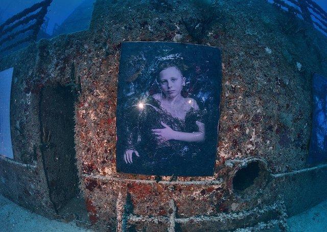 Фотограф з Австрії проводить виставки своїх робіт під водою: ефектні фото - фото 351896