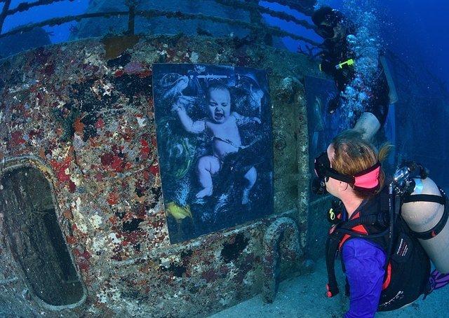 Фотограф з Австрії проводить виставки своїх робіт під водою: ефектні фото - фото 351897