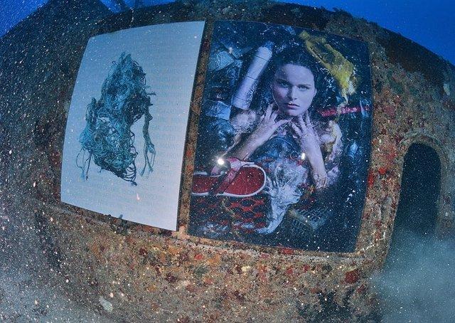 Фотограф з Австрії проводить виставки своїх робіт під водою: ефектні фото - фото 351898