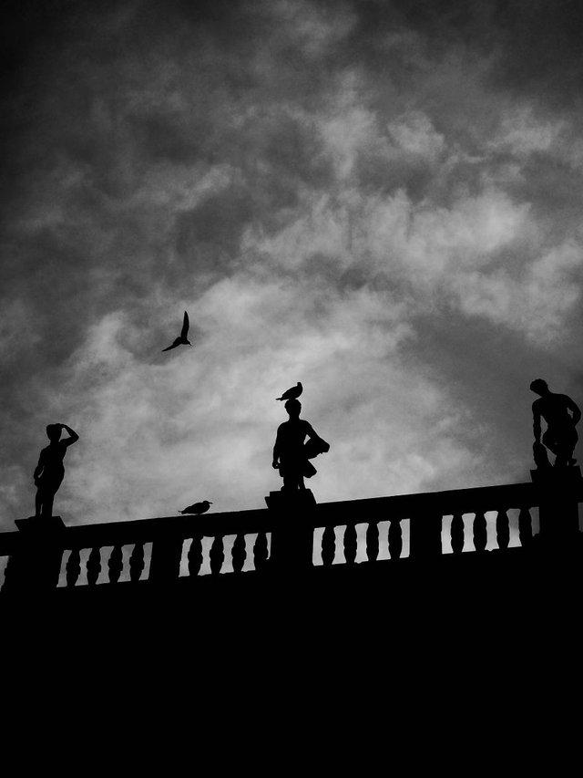 Прогулянка Венецією у чорно-білих фото, від яких перехоплює подих - фото 352465