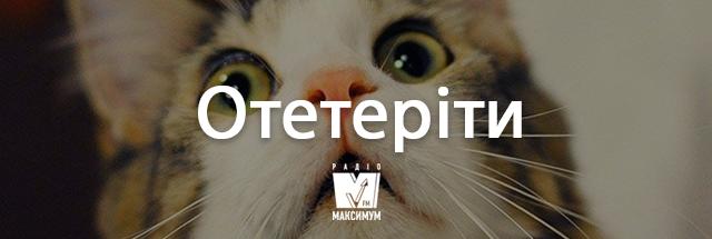 Говори українською красиво! 10 колоритних слів, які збагатять твою мову - фото 352524