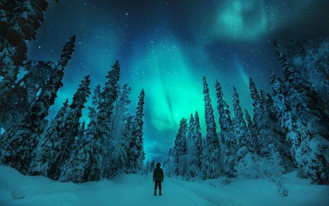 Обожнюєте природу? Відправляйтесь у Фінляндію - фото 353148