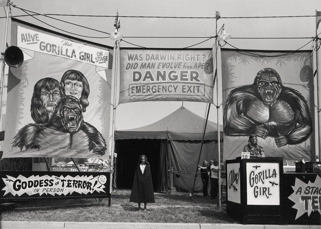 Заради цих знімків фотограф подорожував з бродячим цирком - фото 353232