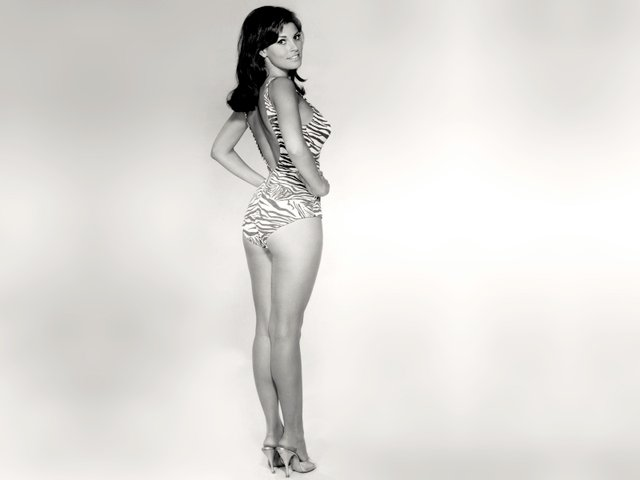 Як виглядає актриса, яка прославила бікіні - фото 353746
