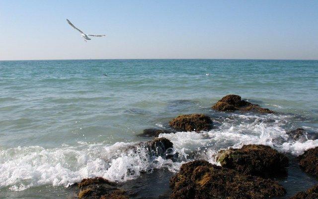 Три найтепліші моря у світі - фото 353799