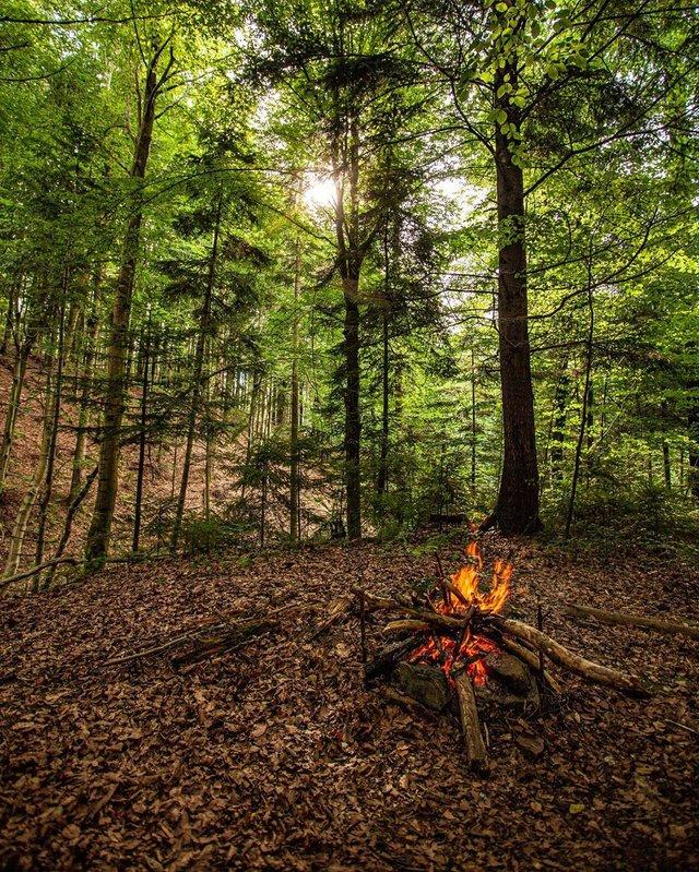 Куди поїхати восени в Україні: ТОП 7 маршрутів для осіннього відпочинку - фото 353984
