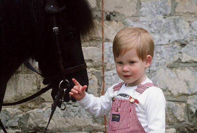 Принц Гаррі у дитинстві  - фото 355104