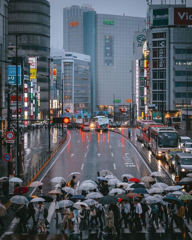 Прогулянка вулицями Токіо у яскравих фото - фото 355800