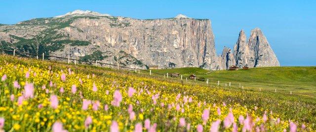 Незабутній відпочинок: чому варто поїхати у Доломітові Альпи - фото 356830