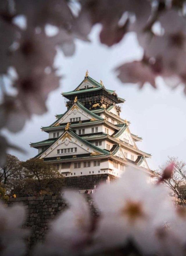 Найкрасивіші будівлі Азії з висоти пташиного польоту - фото 359806