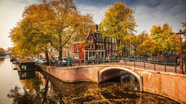 Нідерланди планують відмовитися від назви Голландія та створити новий імідж країни - фото 359905