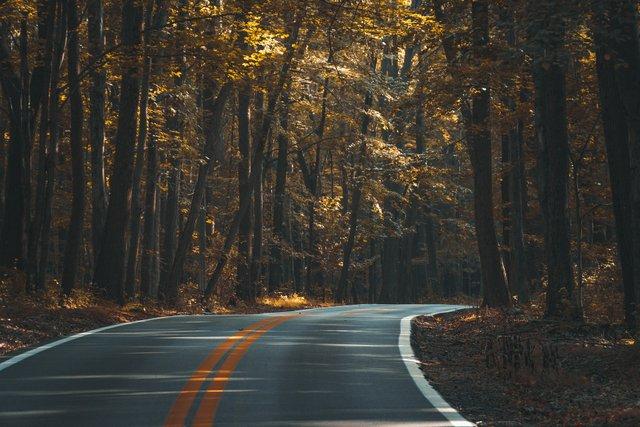 Платні дороги в Україні - фото 360503