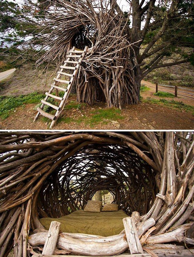 treebonesresort - фото 361374