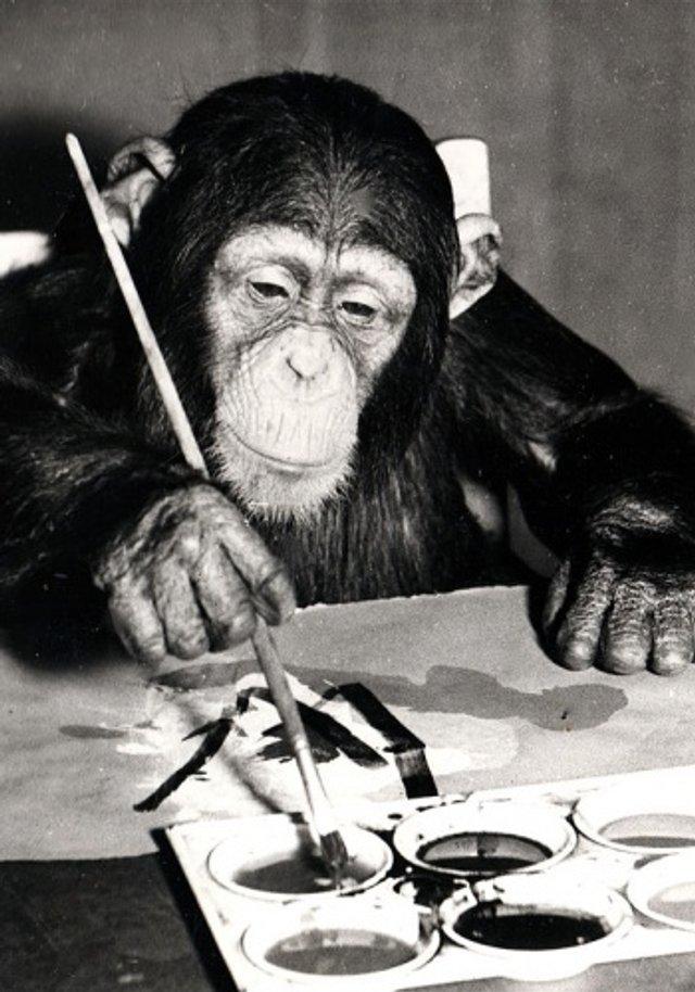 У Лондоні пройде виставка картин, намальованих мавпою: фото - фото 361492