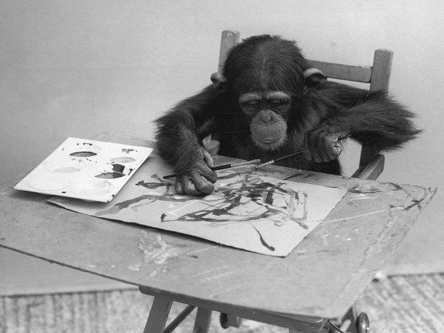 У Лондоні пройде виставка картин, намальованих мавпою: фото - фото 361493