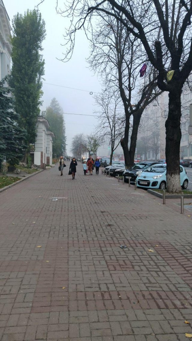 Туманний ранок у Києві в атмосферних знімках - фото 361851