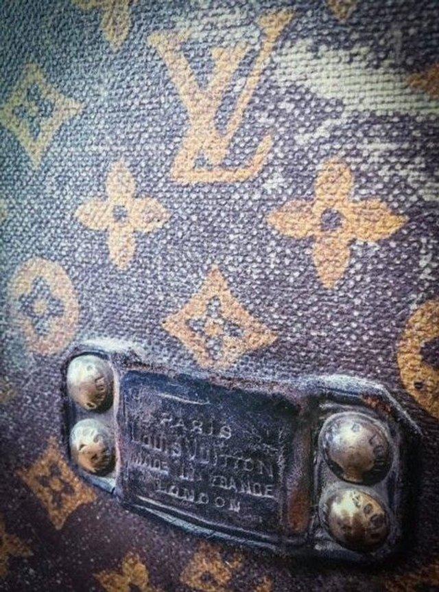 Українка зберігала кукурудзу в раритетному і дорогезному Louis Vuitton - фото 363193