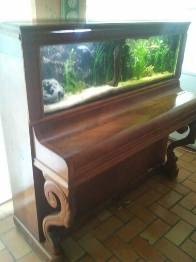 Старі піаніно перетворили у стильні меблі: ідеї для декору - фото 363387