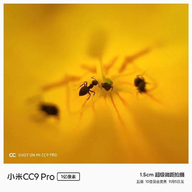 Глава Xiaomi показав дивовижні макрознімки, які зробив на Mi CC9 Pro - фото 365037