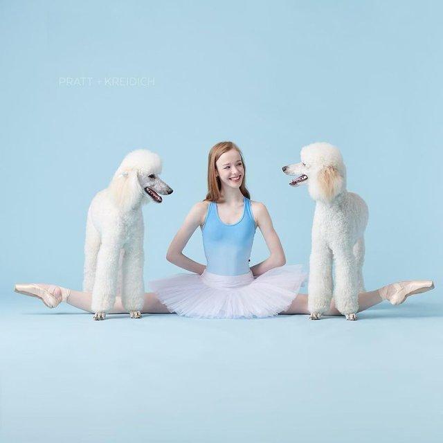 Балет з собаками: ці фото однозначно змусять вас усміхнутися - фото 365992