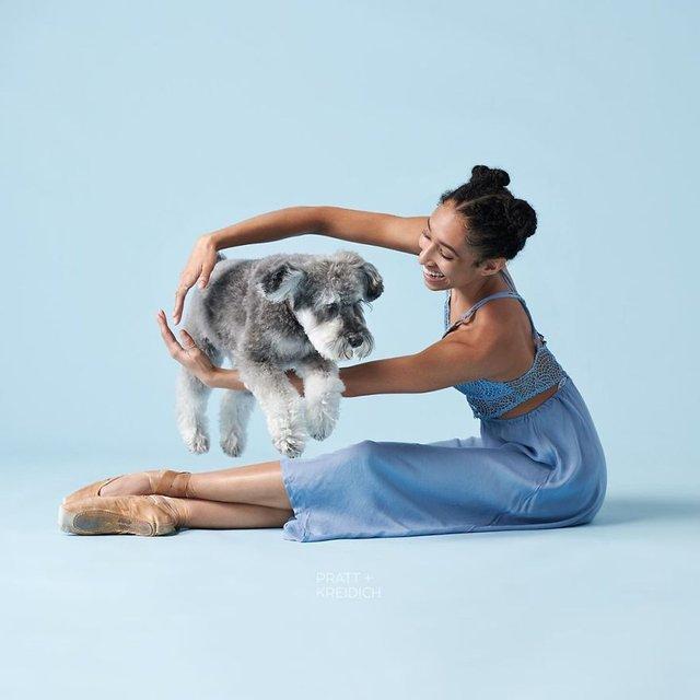 Балет з собаками: ці фото однозначно змусять вас усміхнутися - фото 365999
