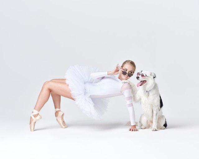 Балет з собаками: ці фото однозначно змусять вас усміхнутися - фото 366000