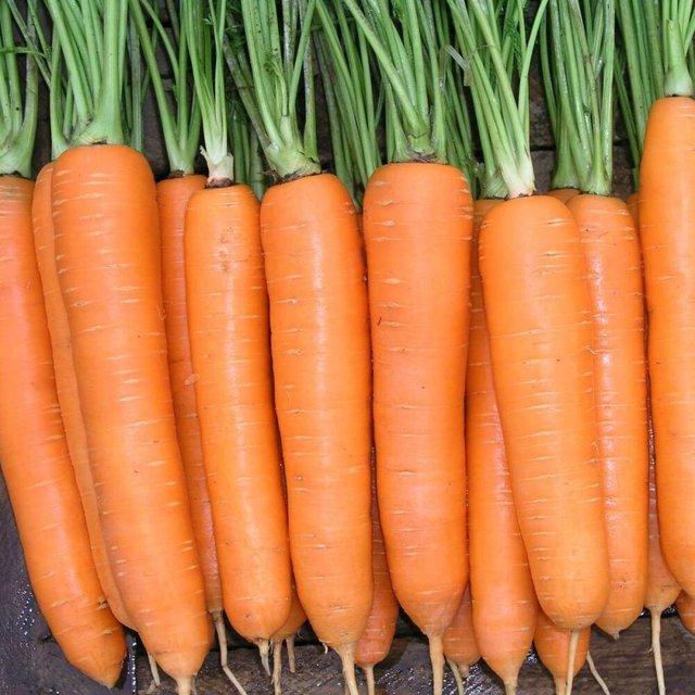 Смачна морква  - фото 366431