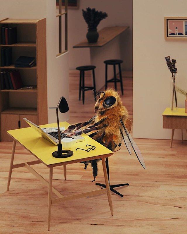 В Instagram з'явилася перша у світі блогерка-бджола: ефектні фото - фото 366640