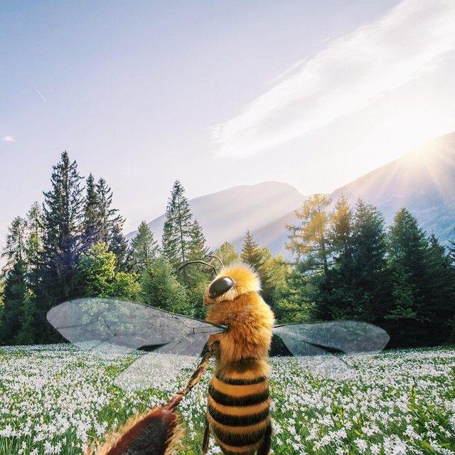 В Instagram з'явилася перша у світі блогерка-бджола: ефектні фото - фото 366644