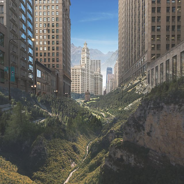 Якби природа поглинула сучасні міста: вражаючі фото - фото 367888
