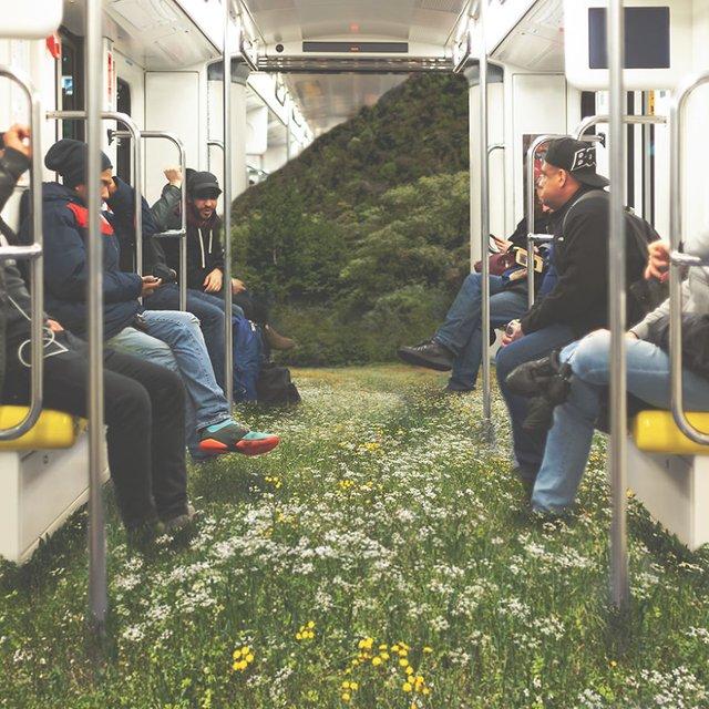 Якби природа поглинула сучасні міста: вражаючі фото - фото 367891