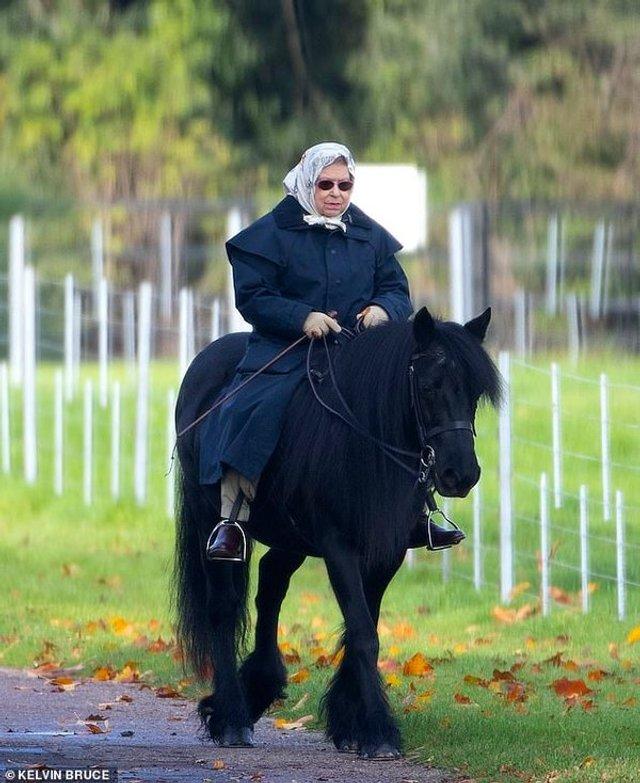Я на коні: 93-річна королева Єлизавета II покаталась верхи - фото 368401
