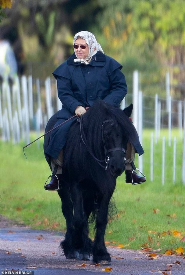 Я на коні: 93-річна королева Єлизавета II покаталась верхи - фото 368402