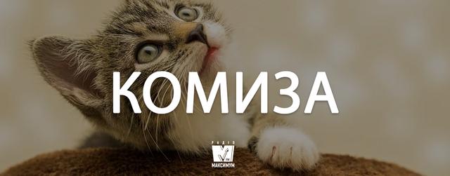 Говори красиво! 7 колоритних слів в українській мові, яких ви не знали - фото 368410