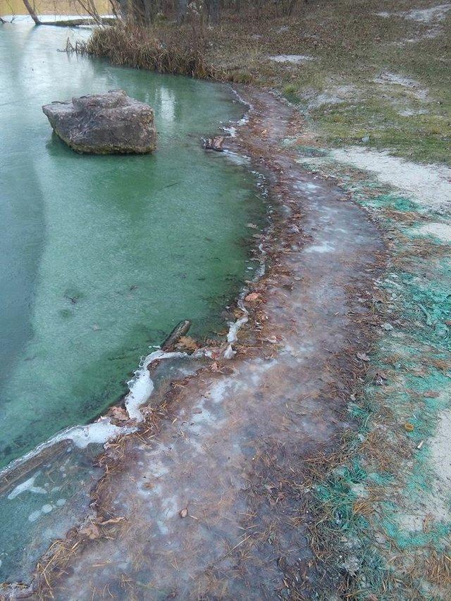 Біля Києва позеленіло озеро: вражаючі фото - фото 370496