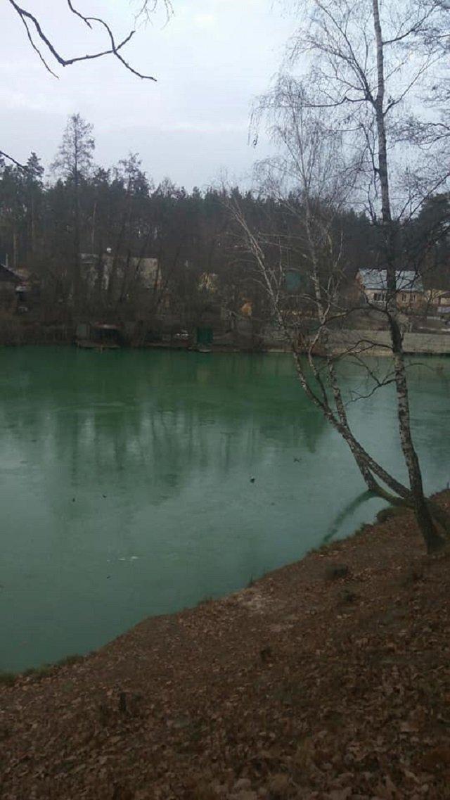 Біля Києва позеленіло озеро: вражаючі фото - фото 370500