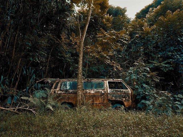 Фотограф знайшов у гавайських лісах занедбані авто: ефектні кадри - фото 371260