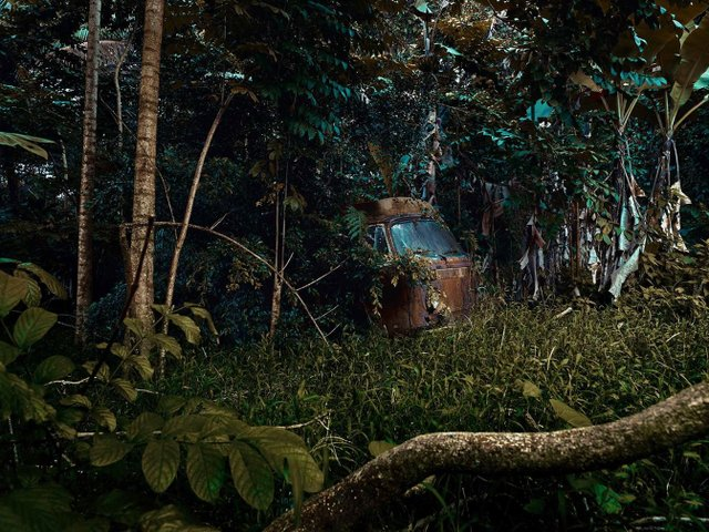 Фотограф знайшов у гавайських лісах занедбані авто: ефектні кадри - фото 371262