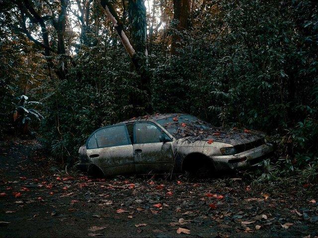 Фотограф знайшов у гавайських лісах занедбані авто: ефектні кадри - фото 371265