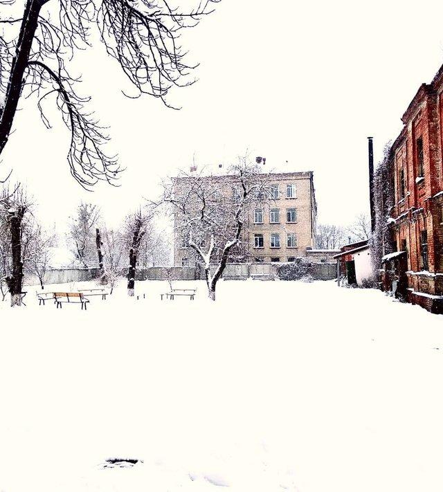 Перший сніг в Україні: добірка найкращих фото з Instagram - фото 371820