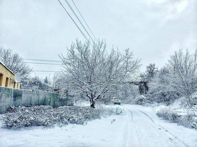 Перший сніг в Україні: добірка найкращих фото з Instagram - фото 371822
