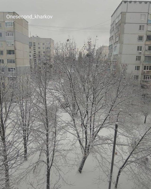 Перший сніг в Україні: добірка найкращих фото з Instagram - фото 371824