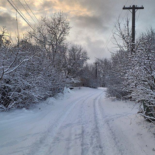 Перший сніг в Україні: добірка найкращих фото з Instagram - фото 371828