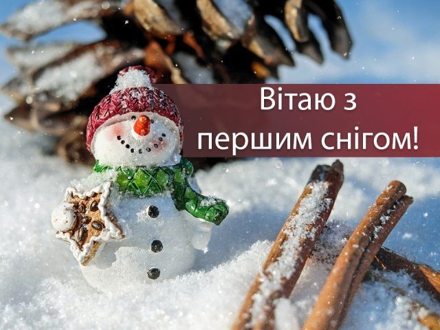 З першим снігом! Вітальні картинки, листівки і фото з початком зими - фото 371854