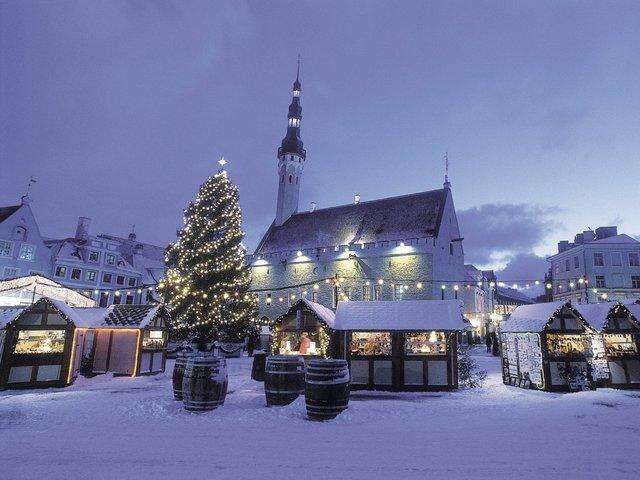 Новий Рік в Ужгороді  - фото 373464