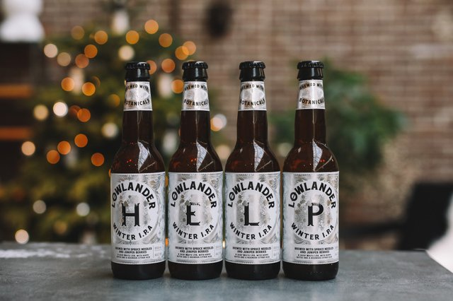 В Амстердамі випустили пиво з хвої викинутих різдвяних ялинок - фото 373983