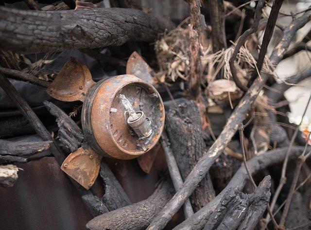 В Австралії поставили ялинку зі спалених гілок, і ось чому - фото 375400