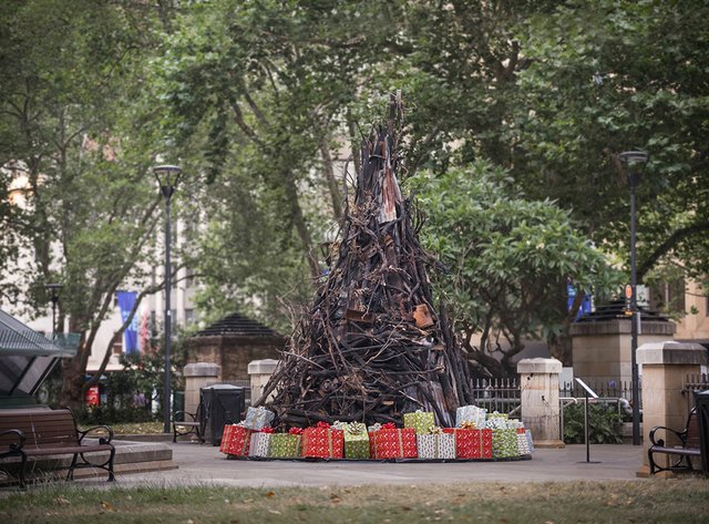 В Австралії поставили ялинку зі спалених гілок, і ось чому - фото 375401